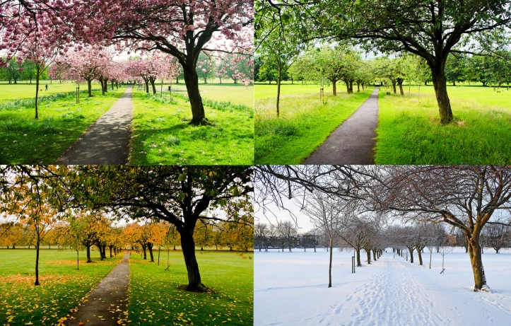 the-four-seasons.jpg